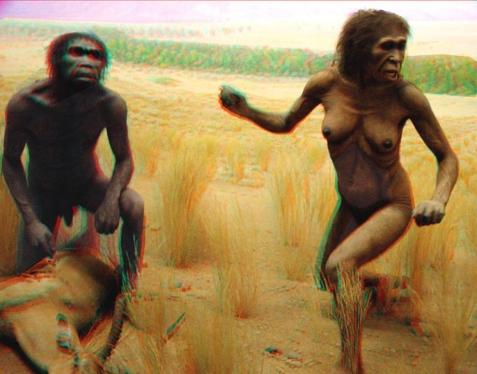 Para australopiteków - Wikimedia Commons
