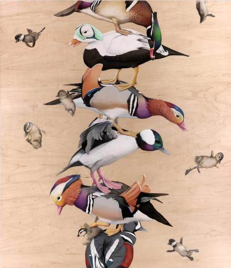 Web.DucksRow